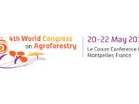 Les premiers résultats des travaux présentés au Congrès Mondial d'agroforesterie.