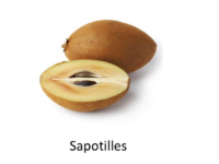 Mieux valoriser les produits associés au cacao dans les sytèmes agro-forestiers